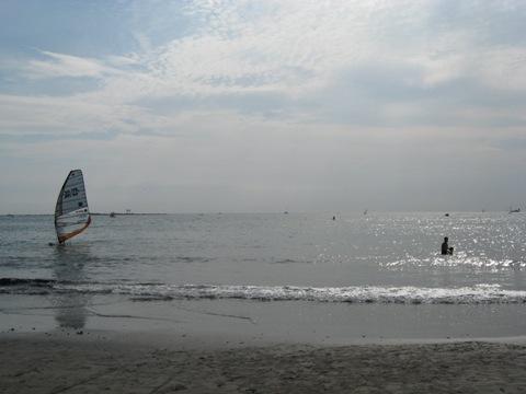 ウインドサーフィン.jpg
